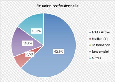 Profils des participants - Situation professionnelle