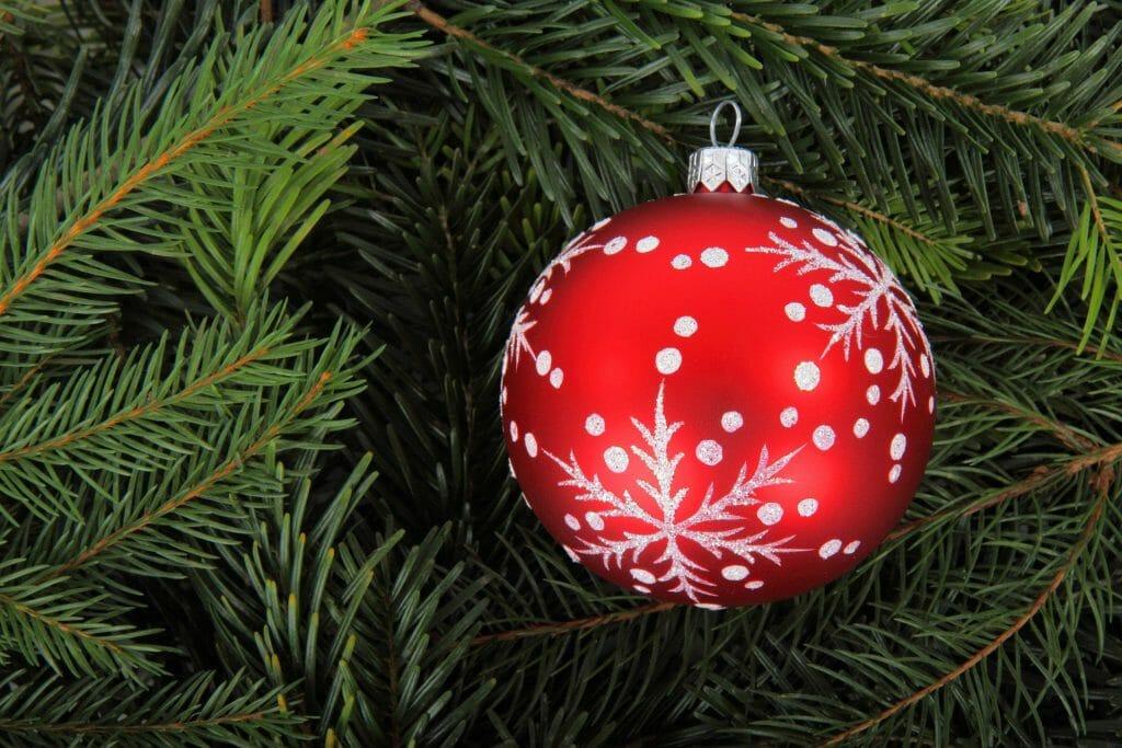 Read more about the article Fermeture pour les fêtes de fin d'année